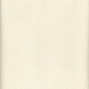 UVI5502 Vinyl 55/56 White Haircell