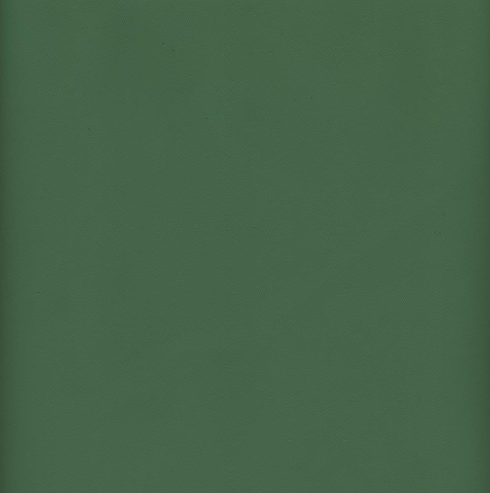 Vinyl 56 Light Green Gabardine